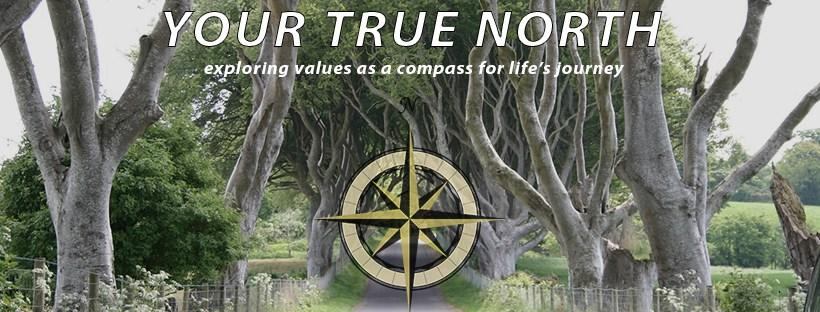 Your True North logo